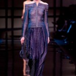Armani-Prive-Spring-2014-Slideshow-TLO-Site (5)