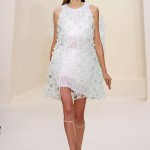 Christian-Dior-Spring-2014-Couture-Collection-Slideshow-Tom-Lorenzo-Site (2)