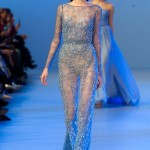 Elie-Saab-Spring-2014-Couture-Collection-Slideshow-Tom-Lorenzo-Site (14)