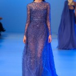 Elie-Saab-Spring-2014-Couture-Collection-Slideshow-Tom-Lorenzo-Site (17)