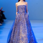 Elie-Saab-Spring-2014-Couture-Collection-Slideshow-Tom-Lorenzo-Site (18)