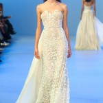 Elie-Saab-Spring-2014-Couture-Collection-Slideshow-Tom-Lorenzo-Site (5)