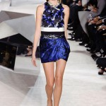 Giambattista-Valli-Spring-2014-Couture-Collection-Slideshow-Tom-Lorenzo-Site (4)