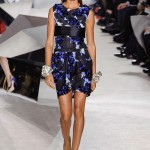 Giambattista-Valli-Spring-2014-Couture-Collection-Slideshow-Tom-Lorenzo-Site (6)