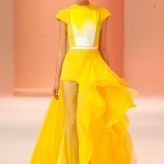 Stephane-Rolland-Spring-2014-Couture-Collection-Slideshow-Tom-Lorenzo-Site (11)