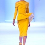 Stephane-Rolland-Spring-2014-Couture-Collection-Slideshow-Tom-Lorenzo-Site (4)