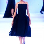 Stephane-Rolland-Spring-2014-Couture-Collection-Slideshow-Tom-Lorenzo-Site (5)