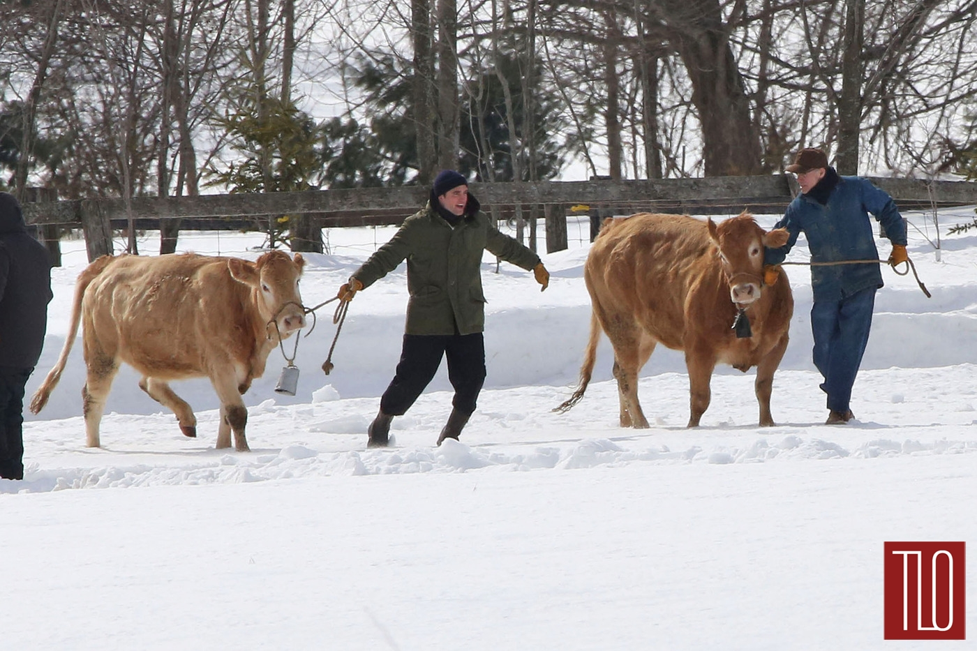 Robert-Pattinson-On-Set-Life-Snow-Cows-Tom-Lorezo-Site-TLO (1)