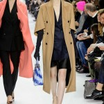 Christian-Dior-Fall-2014-Collection-Slideshow-Tom-Lorenzo-Site-TLO (3)