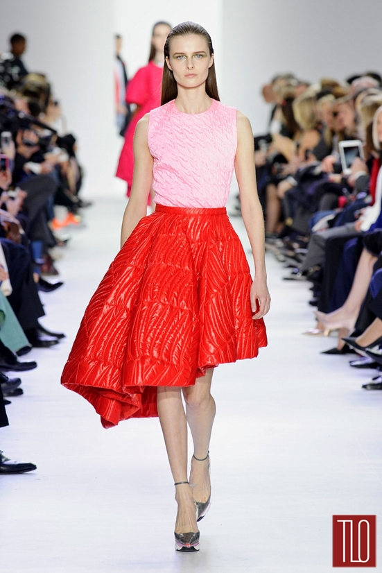 Christian-Dior-Fall-2014-Collection-Tom-Lorenzo-Site-TLO (17)