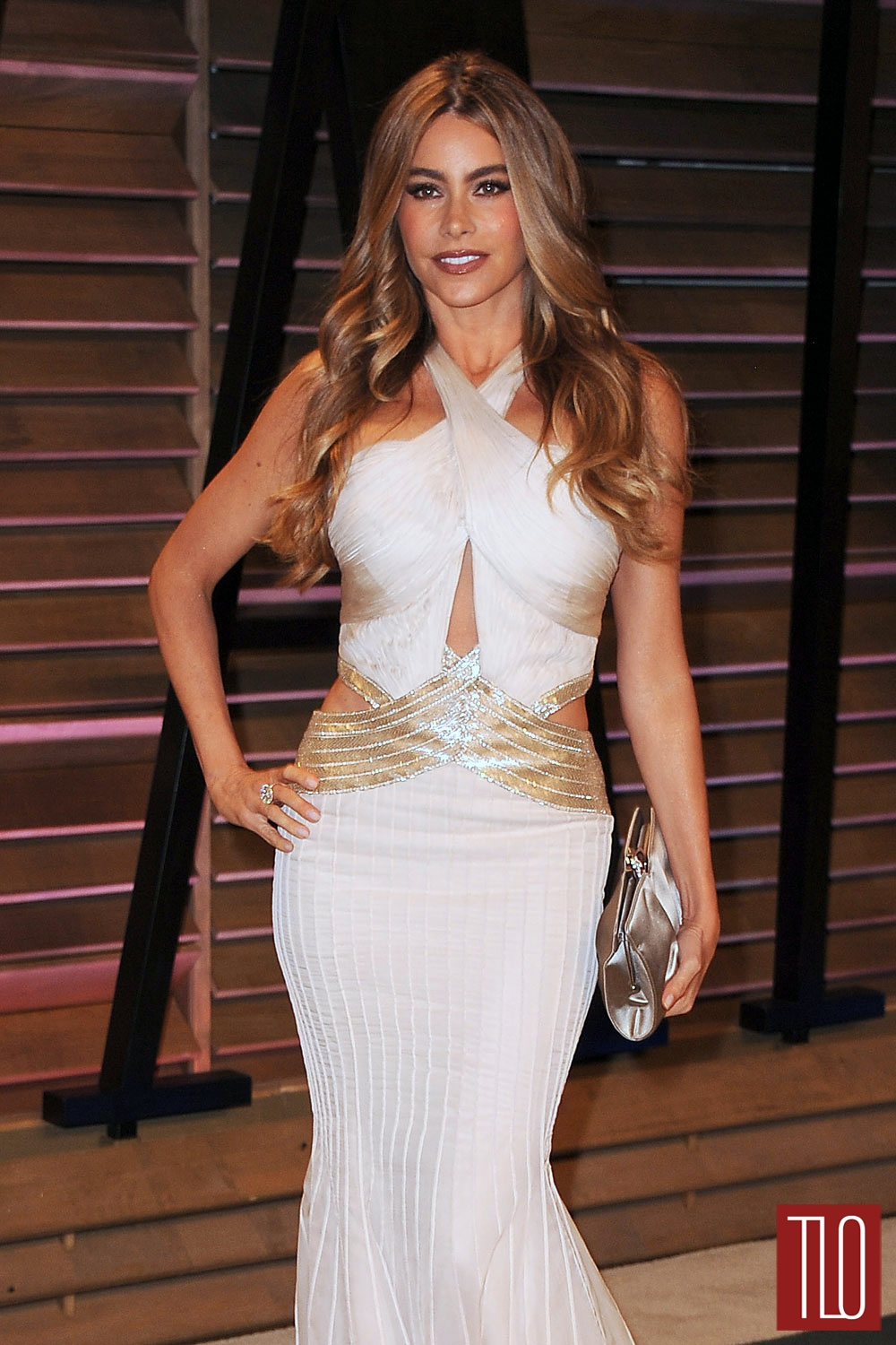 Sofia-Vergara-Robert-Cavalli-Oscars-2014-Vanity-Fair-Party-Tom-Lorenzo-Site-TLO (1)